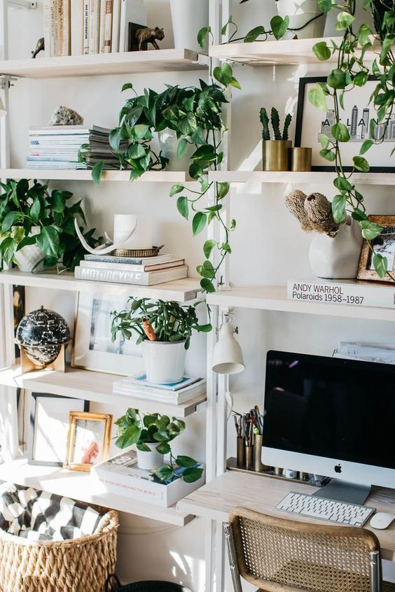 bureau-vert-plante