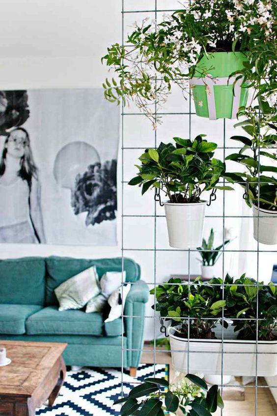 cloison-plantes-vertes-salon-idée-deco