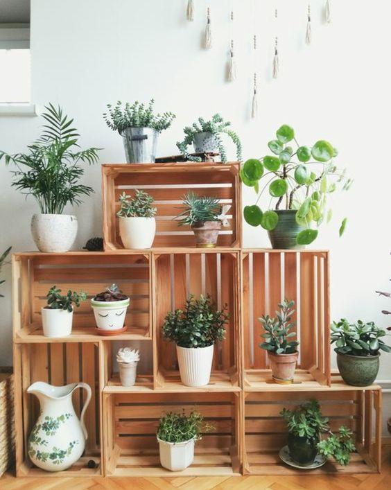deco-plante-vintage