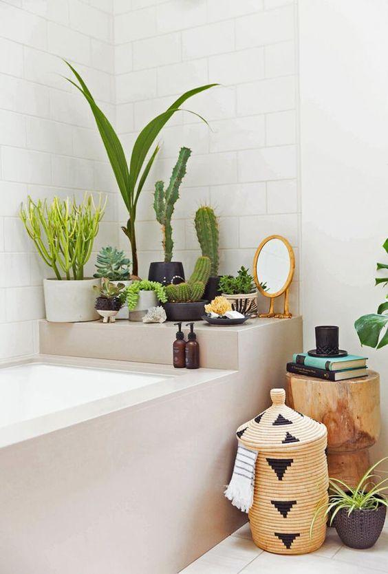 plantes-vertes-salle-de-bain